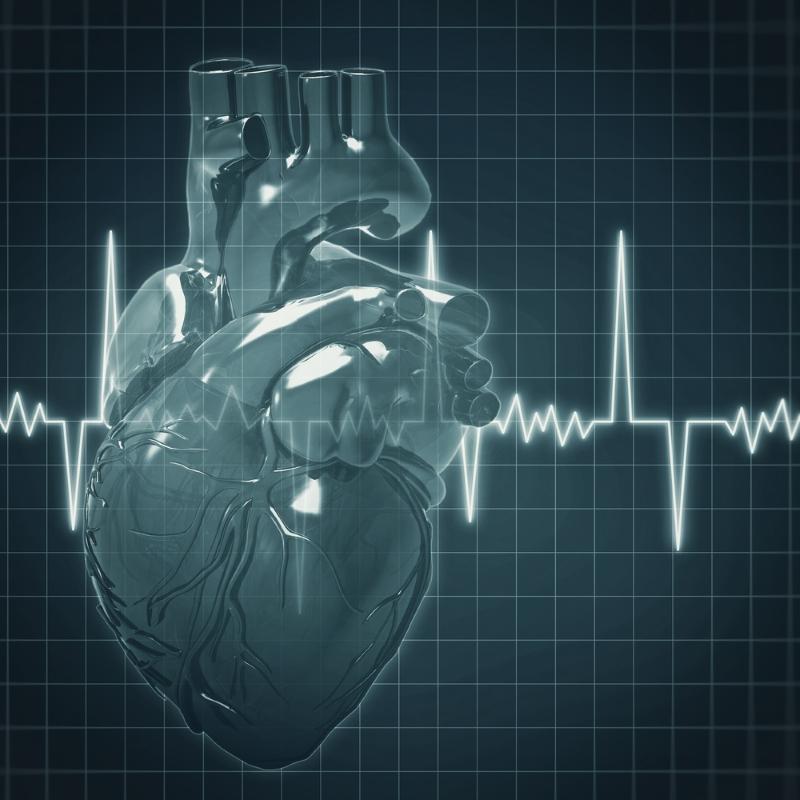 Какая кровь, такая и жизнь: вот как от вязкости крови зависит состояние всего организма. Распознай проблему вовремя.