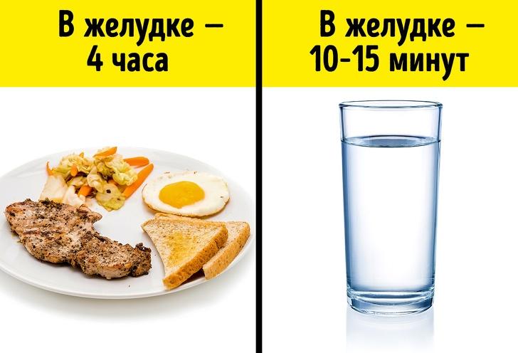 И все-таки можно ли пить воду во время еды?